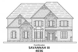Savannah III